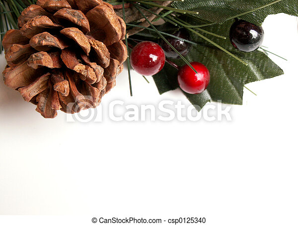 Christmas greenery - csp0125340