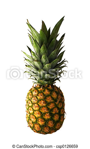 Pineapple - csp0126659