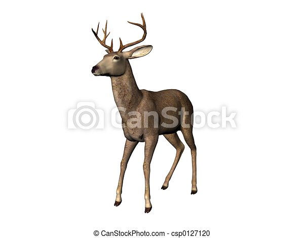 鹿 - csp0127120
