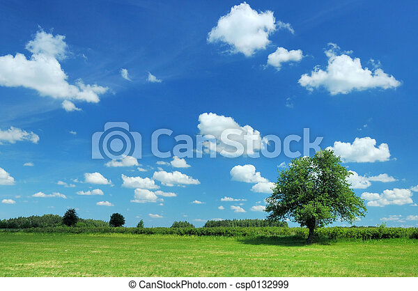 sommer, landschaftsbild - csp0132999