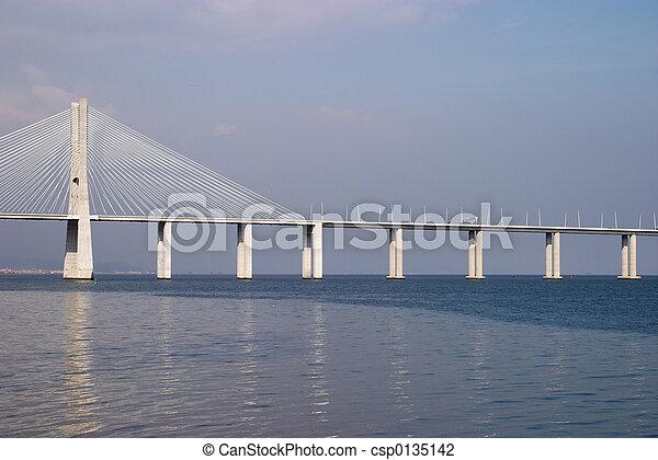 Bridge Vasco da Gama - csp0135142