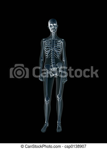 Xray, x-ray of the human female body. - csp0138907