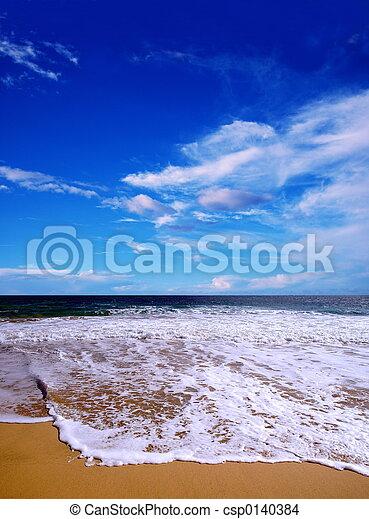 beach in the summer - csp0140384