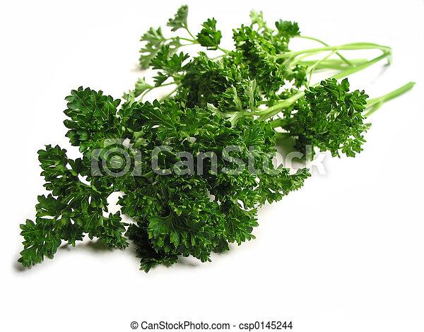 Fresh parsley on white background - csp0145244
