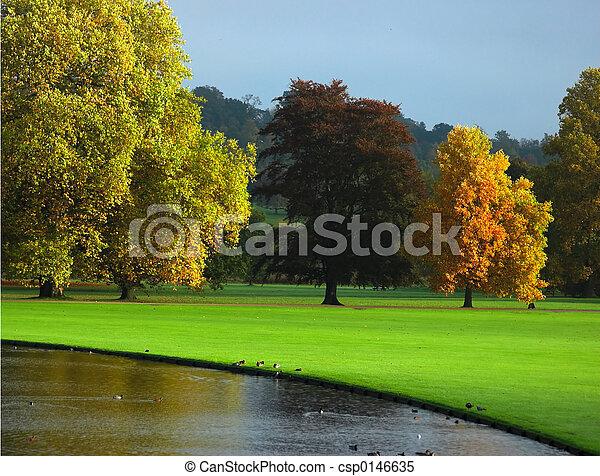 otoño, inglaterra - csp0146635