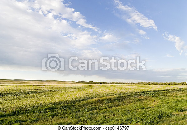 Prairie Sky Landscape - csp0146797