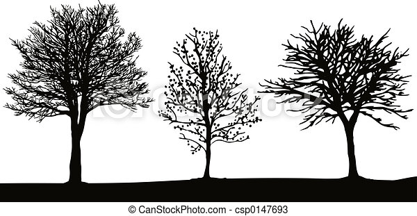 Winter trees - csp0147693