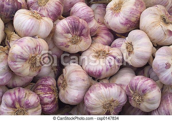 Fresh garlic - csp0147834