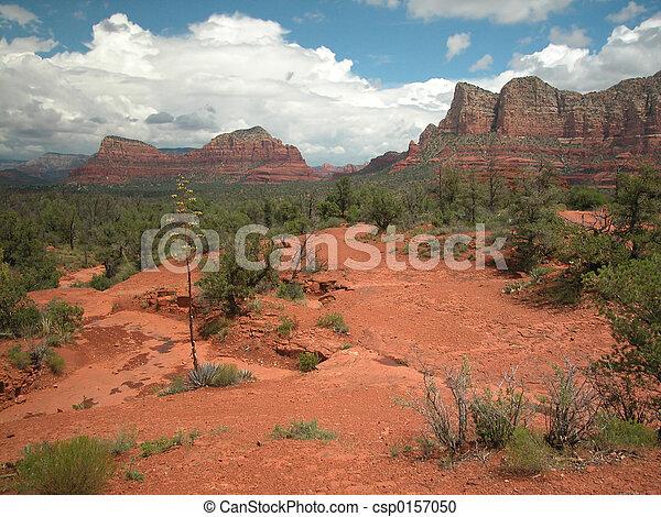 Sedona Arizona Landscape - csp0157050