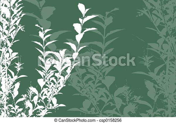 Foliage - csp0158256