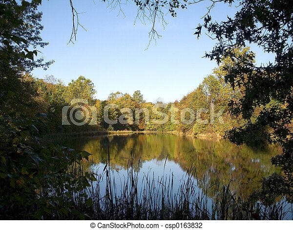 Quiet Pond - csp0163832