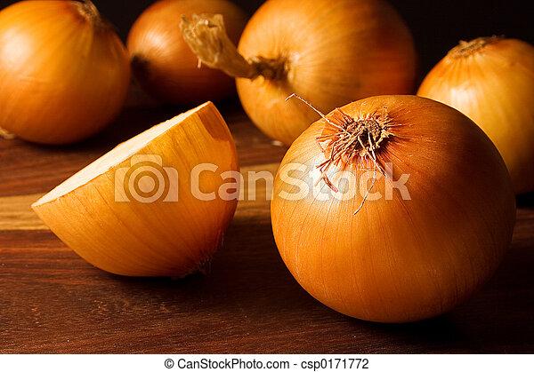 Onion - csp0171772