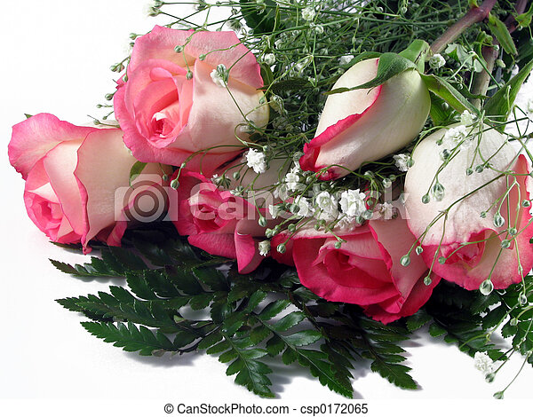 Rose Bouquet - csp0172065