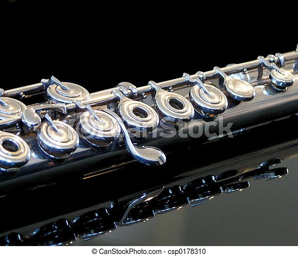 Flute - csp0178310
