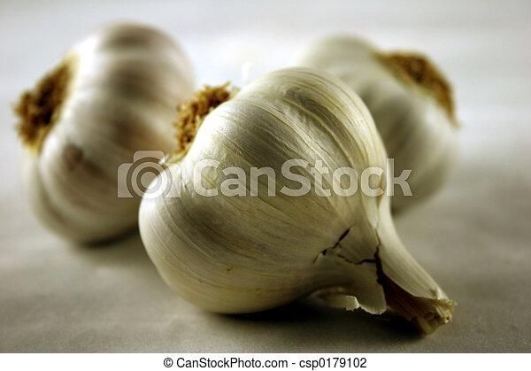 Garlic - csp0179102