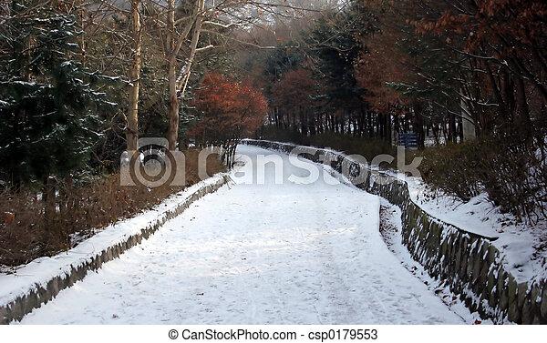 Winter path - csp0179553