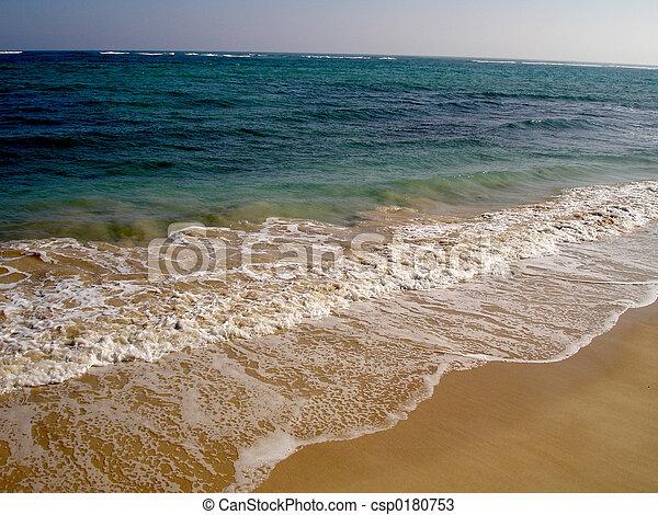 Pacific Ocean - csp0180753