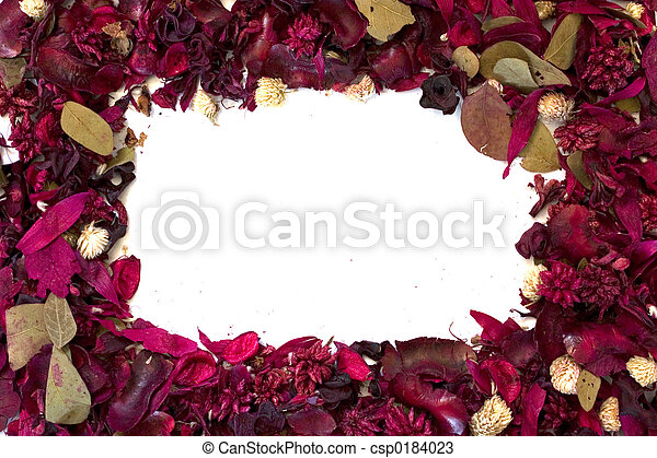 Frame of Dried Flowers - csp0184023