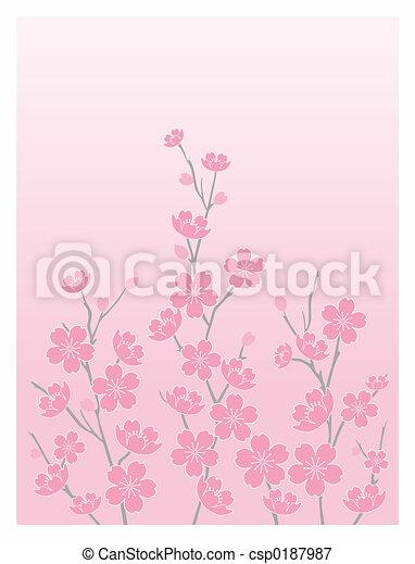 Cherry Blossoms-Vert - csp0187987