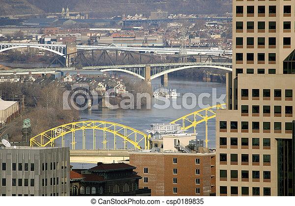 Pittsburgh Bridges - csp0189835