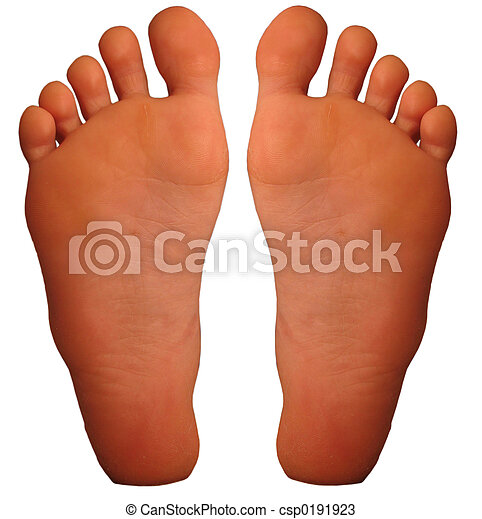 Foot - csp0191923