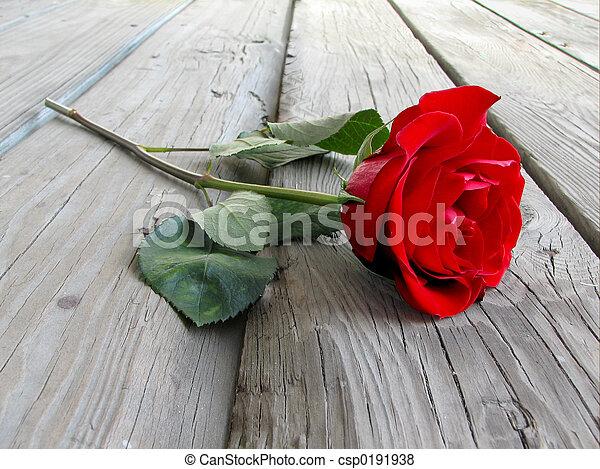 Rose On Wood - csp0191938