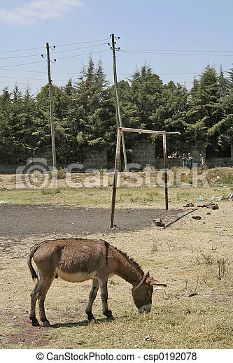 Rural soccer pitch - csp0192078