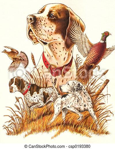 Illustration de chasse chien csp0193380 recherchez des - Dessin de chasse ...