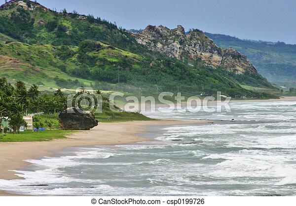 Coastline - csp0199726