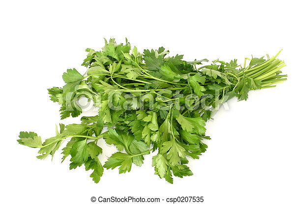 parsley isolated #2 - csp0207535