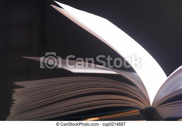 aufgeschlagene Seiten- pitched pages - csp0214687