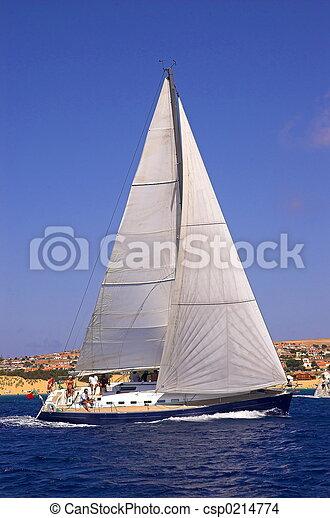 Sailing - csp0214774