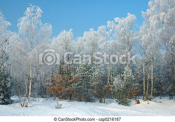hiver - csp0216187