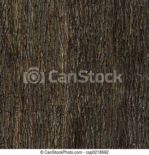 Oak bark texture - csp0218692