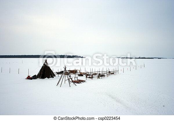 Reindeer Camp - Lapland - csp0223454