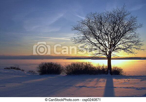 pôr do sol, Inverno - csp0240871