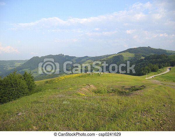 Untouched nature - csp0241629