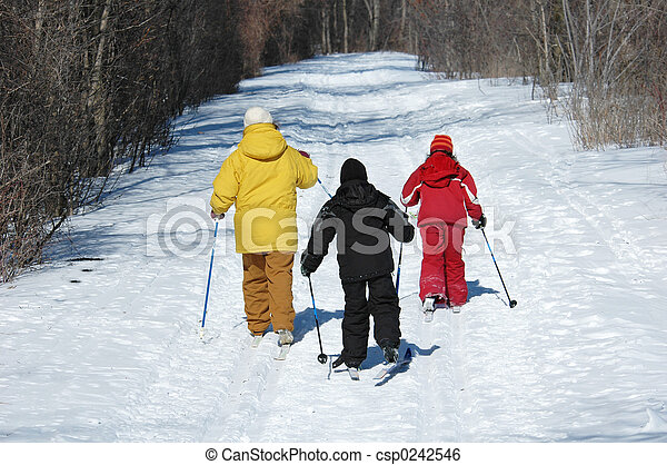 Cross Country Ski - csp0242546