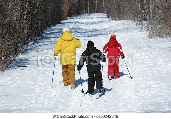 Cross Country Ski - csp0242546