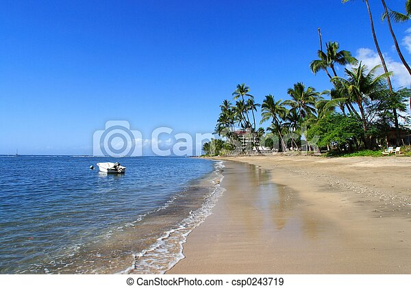 Tropical coastline - csp0243719