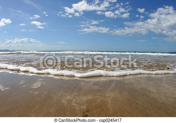 on the beach - csp0245417