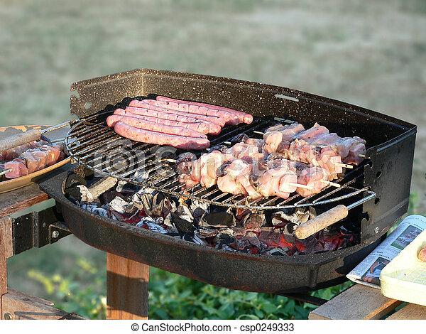 Photos de barbecue quel est frit sur charbon de bois for Quel barbecue charbon choisir