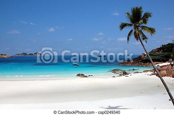Pulau Redand Beach 3 - csp0249340