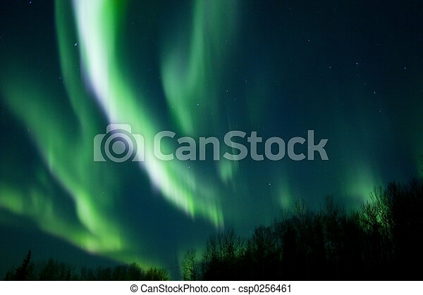 Colors of the northern lights over trees - csp0256461