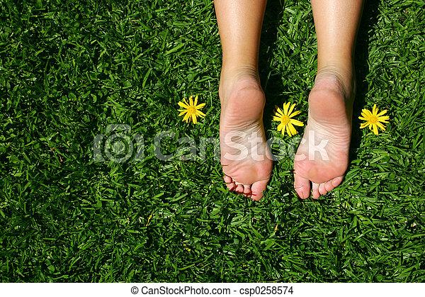 Grass Feet - csp0258574