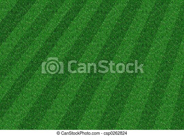 Stripped Lawn - csp0262824