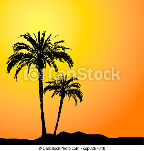 Palm trees - csp0267048