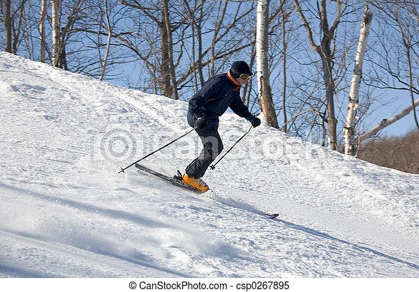 ski 011 downhill - csp0267895