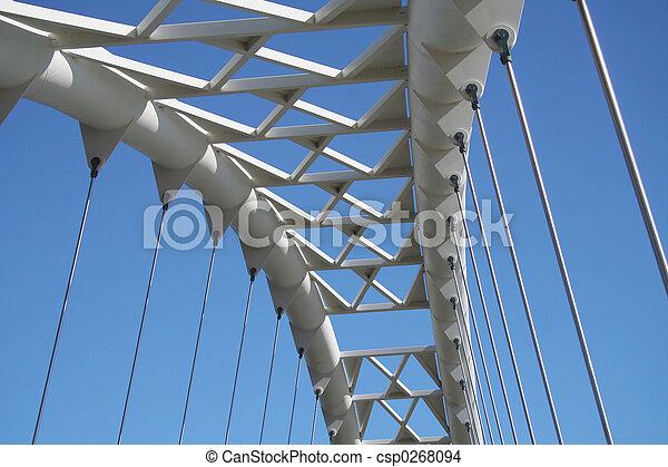 Bridzs - csp0268094