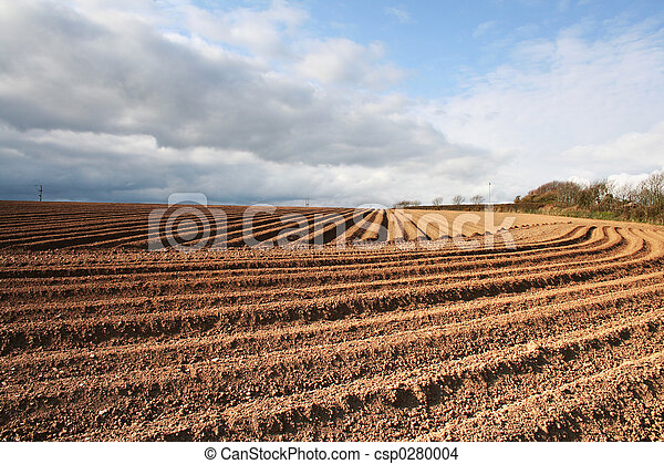 Ploughed Field Furrows - csp0280004
